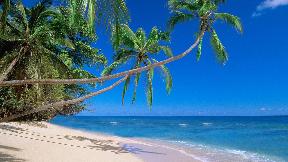 Reise nach Hawaii