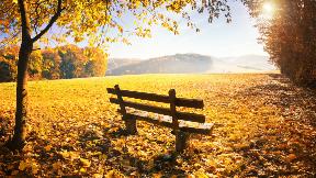 """""""Herbstzauber"""" im Einzelzimmer"""