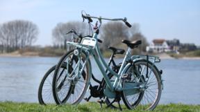 XXL Fahrrad Angebot