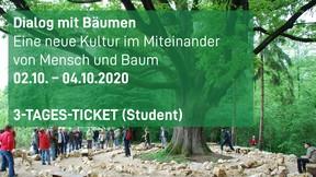 Dialog mit Bäumen-Student