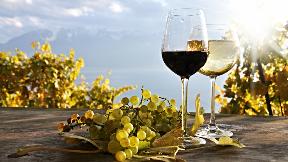 Rotkäppchen und der böse Wein