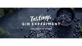 "Samstag, 29.05.2021 ""Gin Experiment: The perfect serve"""